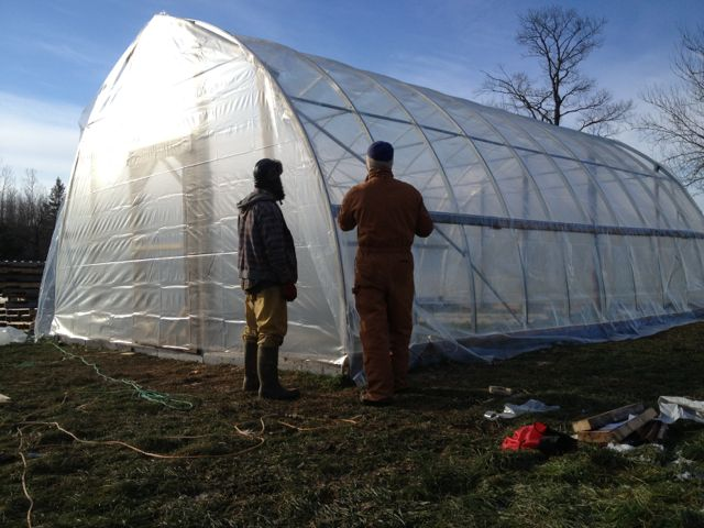 Working on the seedling greenhouse