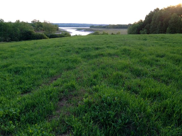 We are preparing this field for vegetables next year.  Veggies with a view!