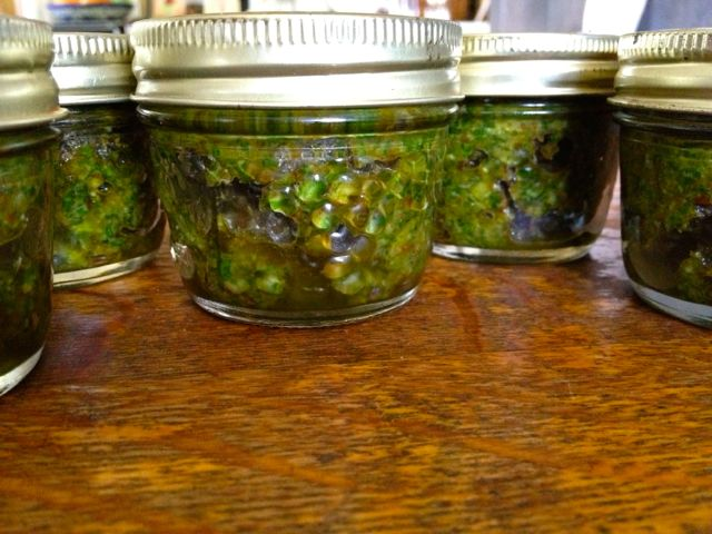 Basil pesto, ready to put in the freezer.
