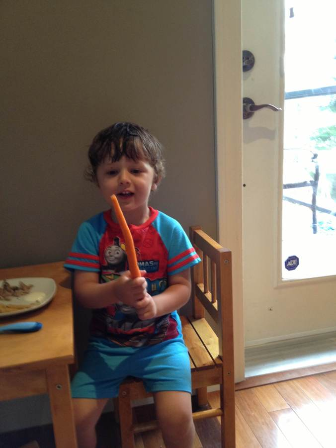 Oliver likes the nice long carrots from last week, but this week we have the smaller, sweeter Mokum carrots