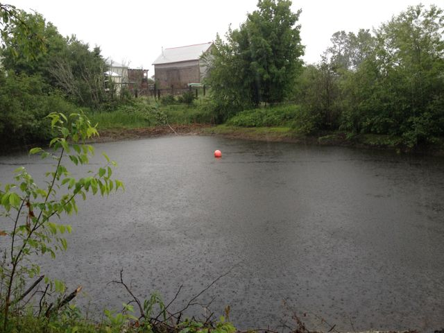 The irrigation pond has filled up from the rain this week.