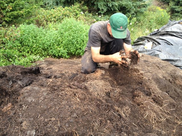 David blissing out on the compost heap