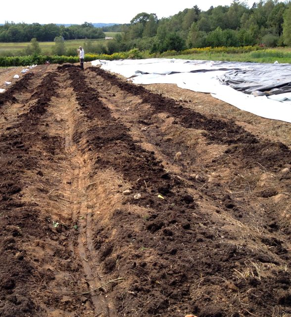 Applying compost to beds in the middle field.
