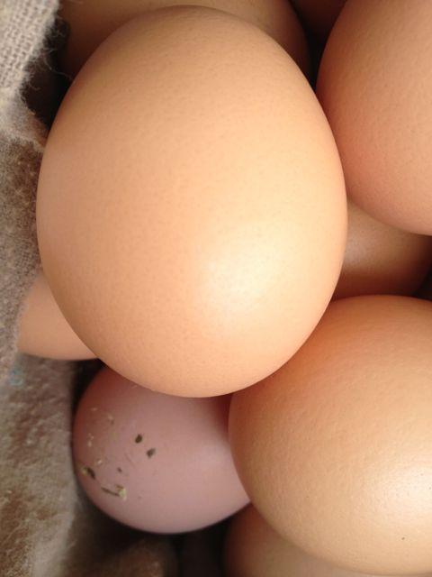 Smiling egg??