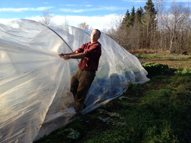 Covering the last hoop house