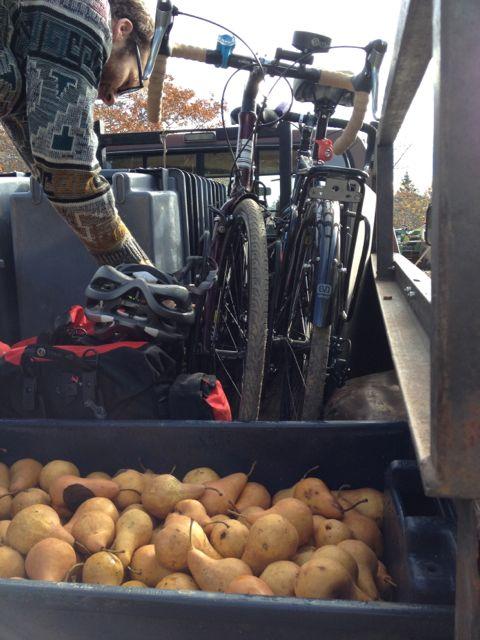 A pear of bikes