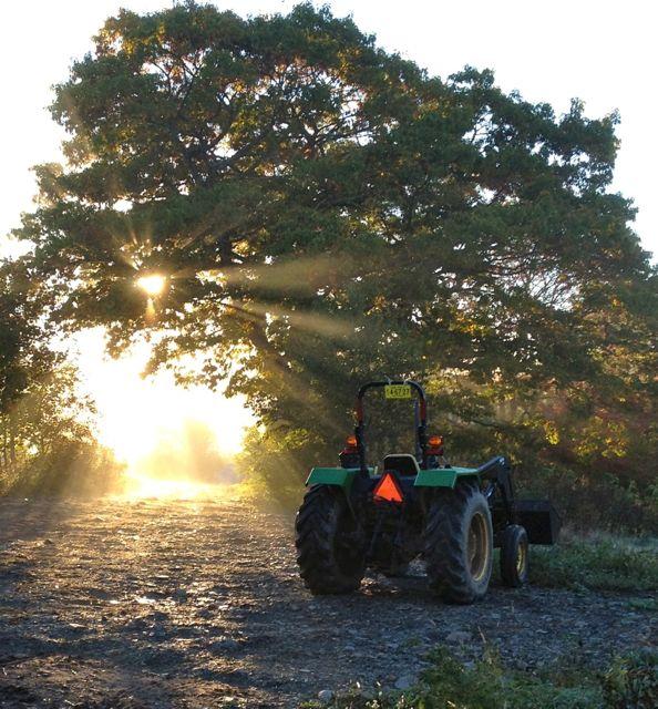 tractorsun14