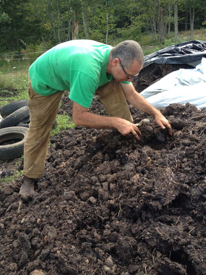 David digging in the compost again. One of his goals in life is to make the very best compost