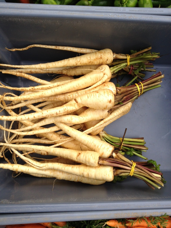 Parsnips hanging out together at Victoria Park